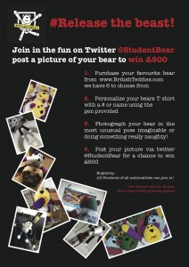 Student Bear
