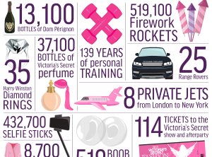 20 things you can buy for the same price as the Victoria's Secret Fantasy Bra [infographic]