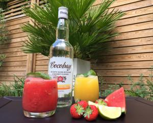 Summer rum cocktail recipes